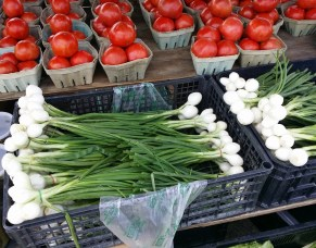 Daytona Beach farmers market onion tomato