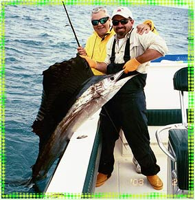 key west sailfish fishing charters