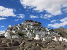Thiksey monastery , Leh