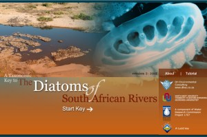 Diatom Identification Key for South African Rivers