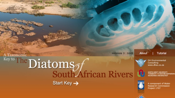 Diatoms of South African Rivers home page