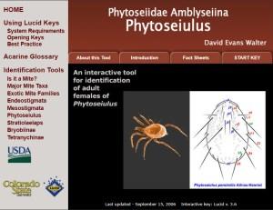 Invasive Mite Identification: Tools for Quarantine and Plant Protection - Phytoseiidae Amblyseiina Phytoseiulus
