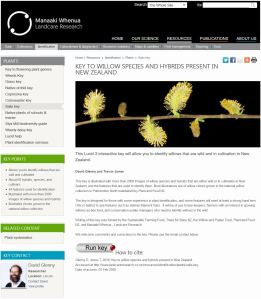 Key to willow species and hybrids present in New Zealand home page