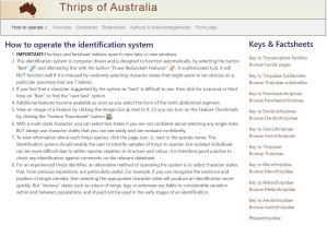 Thrips of Australia key selection screen