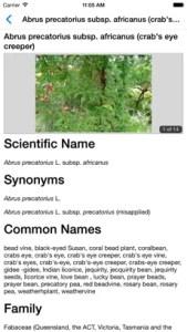 Environmental Weeds of Australia example fact sheet