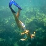 Allison Culbertson snorkel looe key keys boat tours
