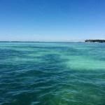 Keys Boat Tours off Little Palm Island