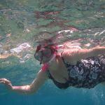 reef snorkel swim