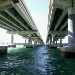 fishing the bridges
