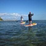 paddleboard keys rental