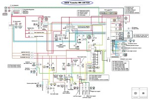 WR250x Wiring diagram for tail lights & turn signals