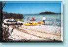 Group Kayak tours and rentals in the Florida Keys