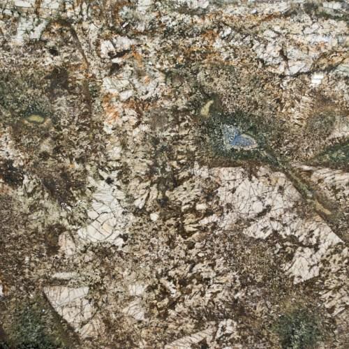 Kamarica 1