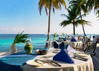 A beach with a palm tree on a table - Restaurant