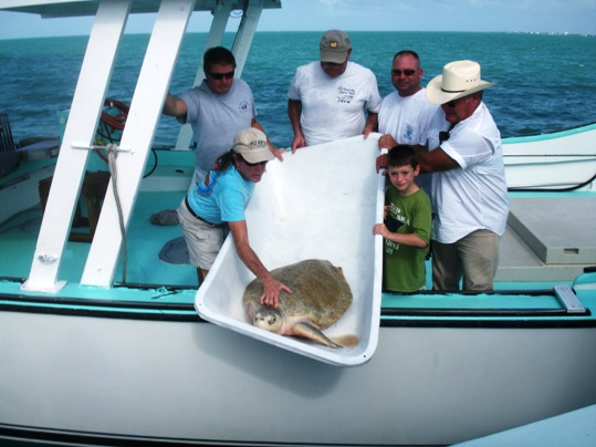 A group of people on a boat in the water - Turtle Hospital