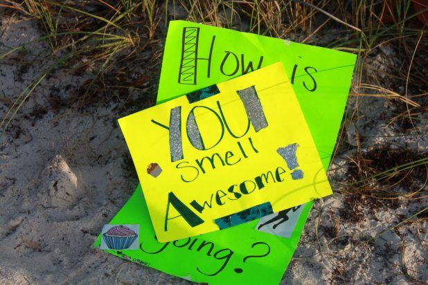 These signs were stashed on the beach to be pulled out at the finish line.