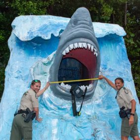 0714 shark3