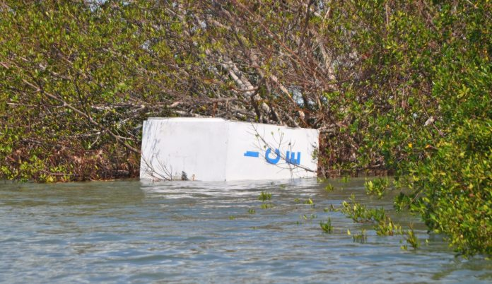 What's next for fishing guides post-Irma - A person riding on the back of a boat in the water - Water resources