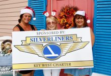 Silverliners