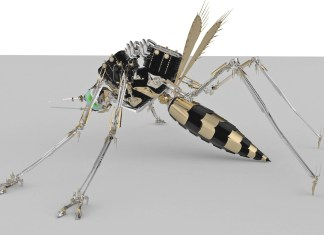 Mosquito: Oxitec is courting the Keys again - A close up of a person - Mosquito