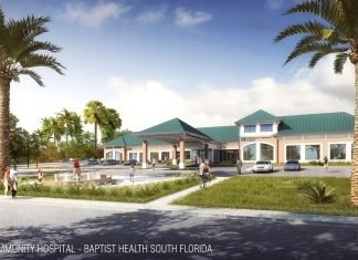 The future of health care – Baptist releases rendering of new Marathon hospital - A palm tree in front of a house - Fishermen's Community Hospital