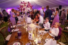 Purple Pumpkin Gala - A group of people sitting at a table in a restaurant - Wedding reception