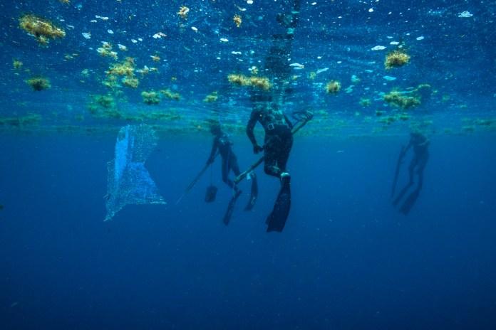 BLUE STAR FISHING – Program encourages preservation of unique ecosystem - A group of people swimming in the water - Florida Keys