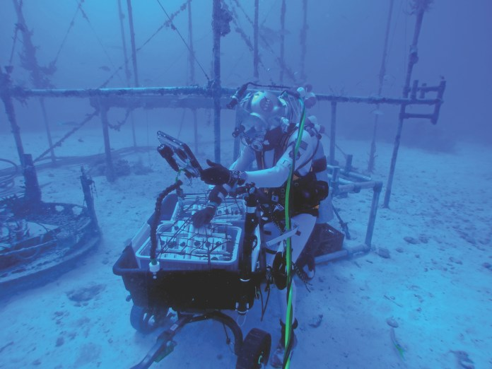 NASA mission in the Keys simulates space - A person swimming in the water - Zortrax