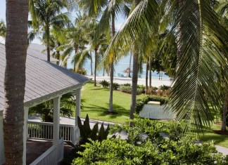Be a Guest Again – Staycation at Sunset Key - A bench next to a palm tree - Florida Keys