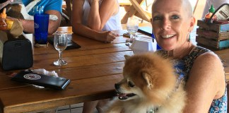 Key West PIO shares breast cancer story - A group of people sitting at a table with a dog - Pomeranian