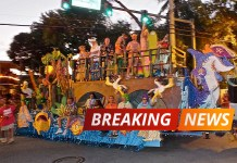 Key West man dies after fall during Fantasy Fest - A group of people on a street - Fantasy Fest