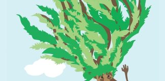 Book 'Fred the Tree' delights young and old - A close up of a map - Fred the Tree