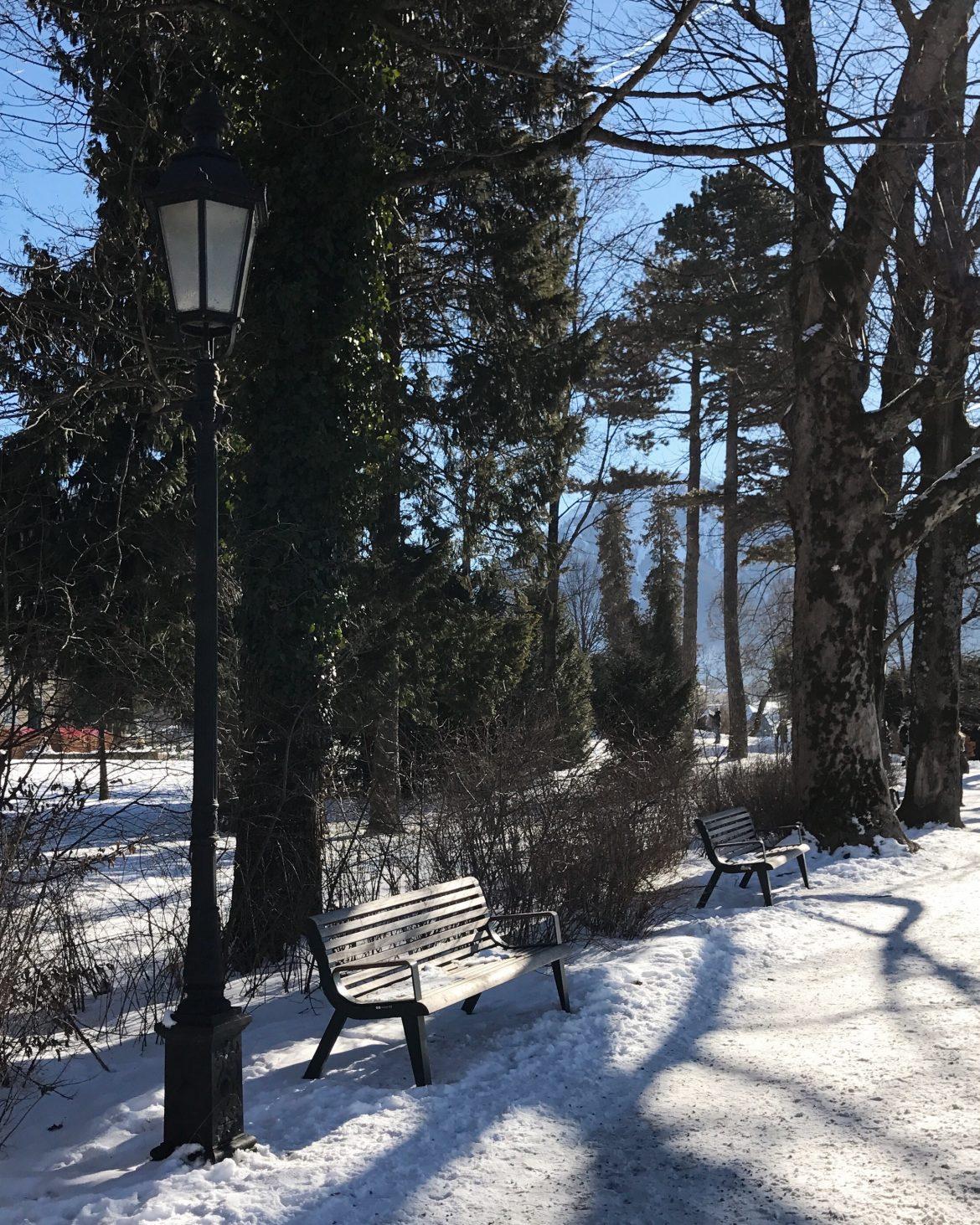 alemanha no inverno parque