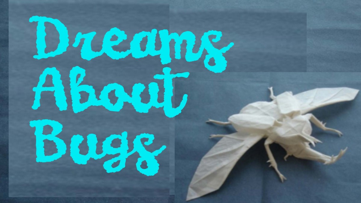 Dreams about bugs healing shame dreamwork with kezia vida buycottarizona