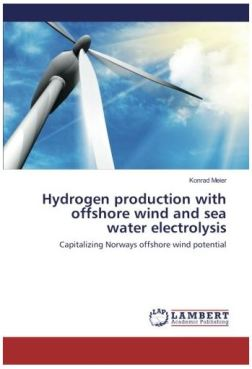 Buch Hydrogen Production with offshore wind and sea water electrolysis