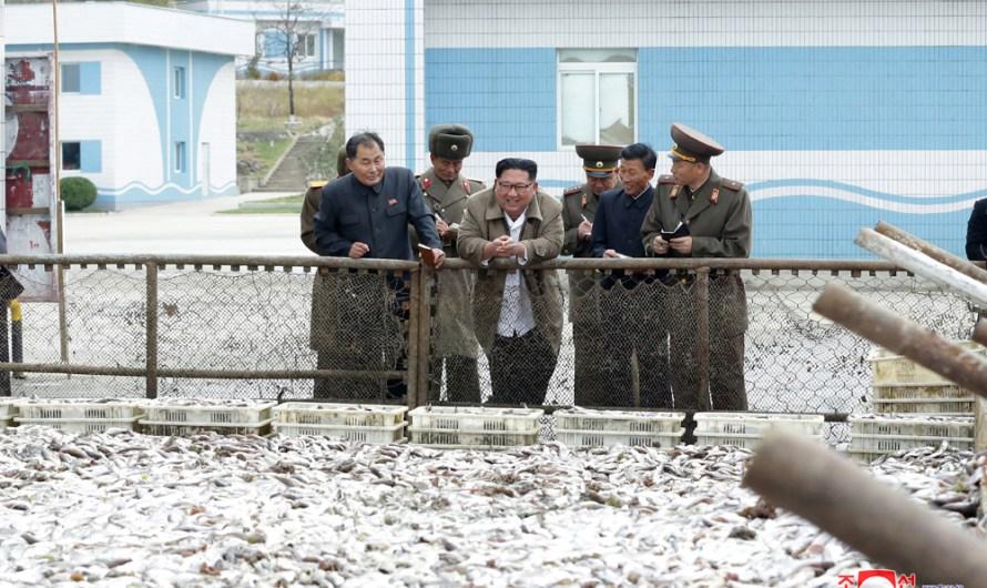 KIM JONG UN visita empresas pesqueras.