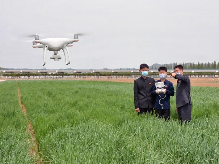 Vigilancia de cultivos con drones.