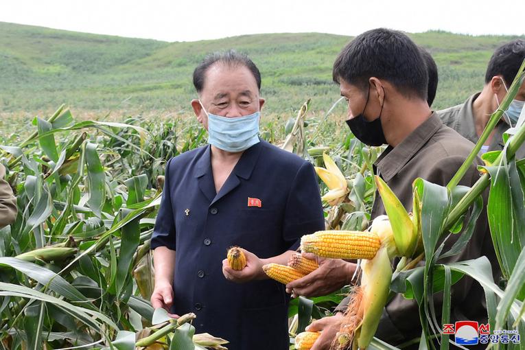 Ri Pyong Chol dirige labores de recuperación en Jangyon