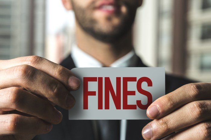 Fines and Penalties
