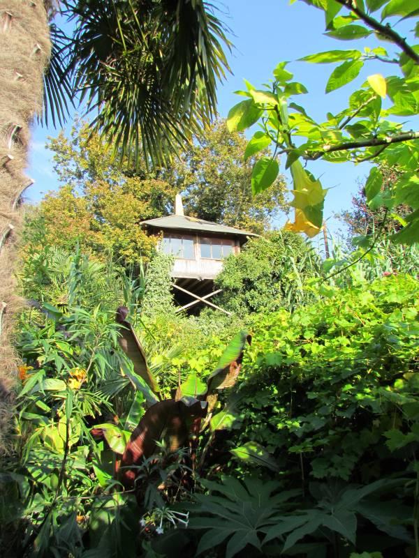 Will Giles Exotic Garden Ks Garden