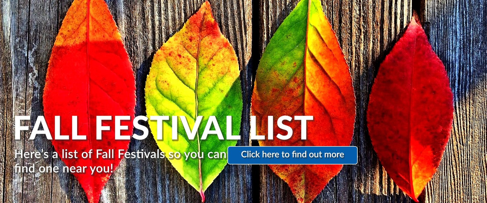 91.3 KGLY East Texas Christian Radio Fall Festivals List