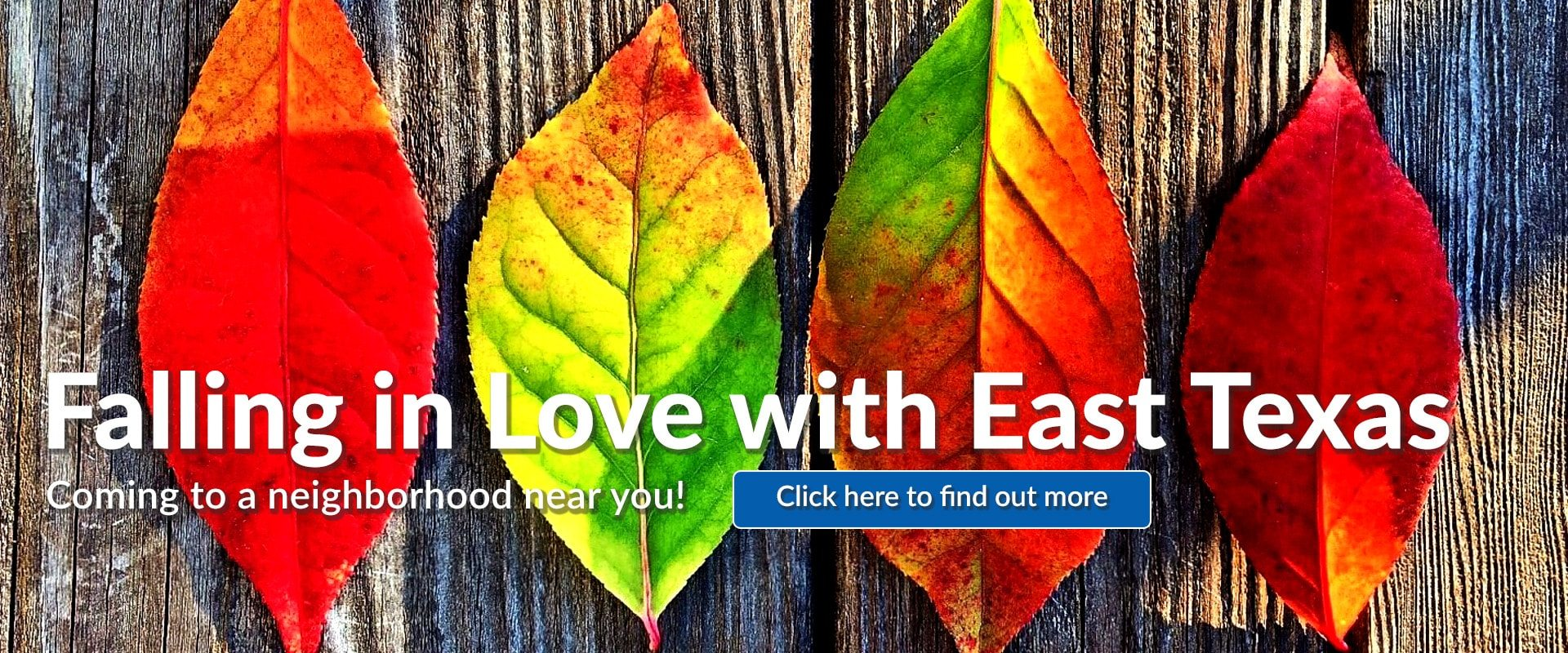 91.3 KGLY East Texas Christian Radio Falling in Love with East Texas Fall Festivals Near You