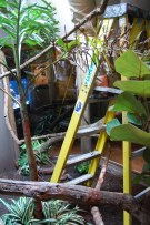 A python, six foot in length, lurks under the ladder as Stephanie changes the heat lamp bulbs.