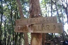 Mt Fortescue summit