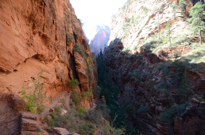 Steep switchbacks on the Angels Landing hike