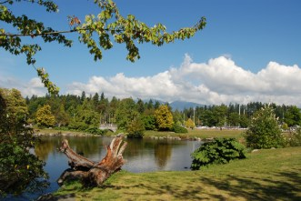 A lagoon in Stanley Park