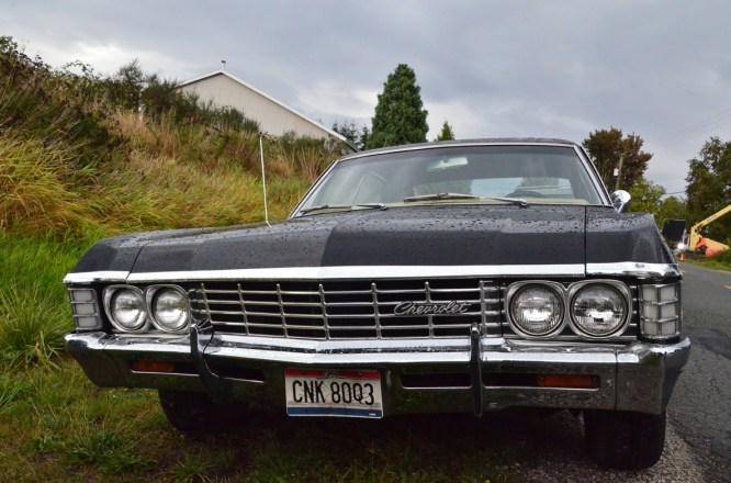 Impala #3