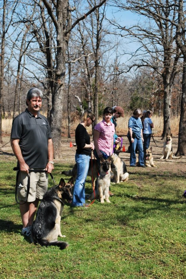 Basic Obedience Class At Keystone German Shepherds & Kennels