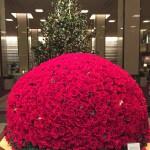 バラ ホテルのロビーのクリスマス飾り