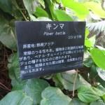 キンマの標識